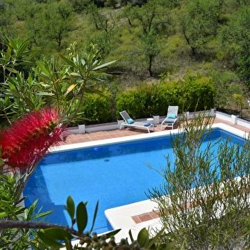 Zwembad, lounge en zonneterrras